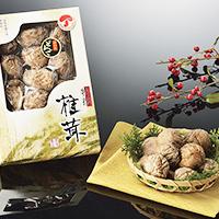 九州産どんこ椎茸